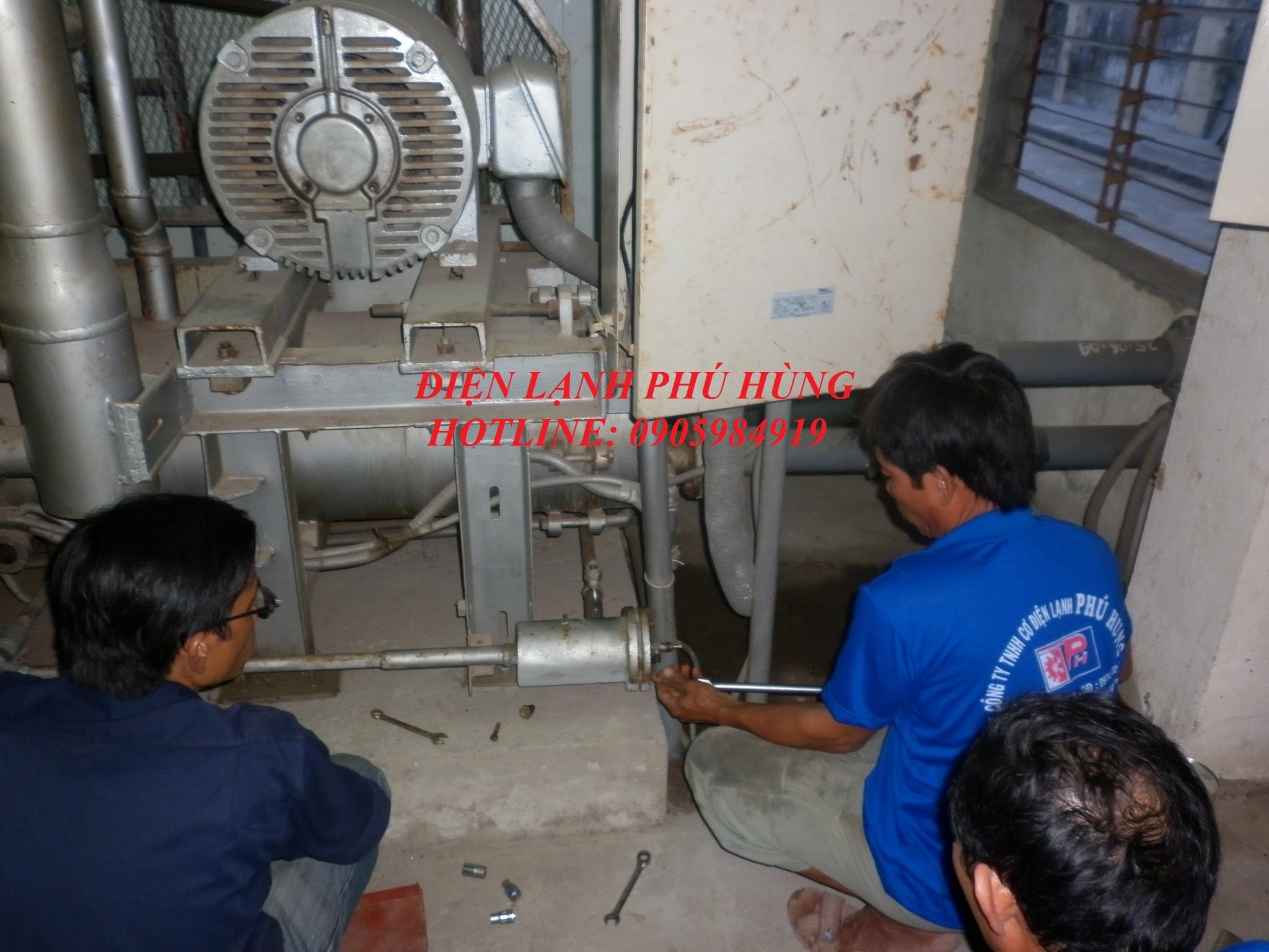 dl ptp5 - Cung cấp hệ thống lạnh cho nhà máy thủy sản Phước Tâm Phát