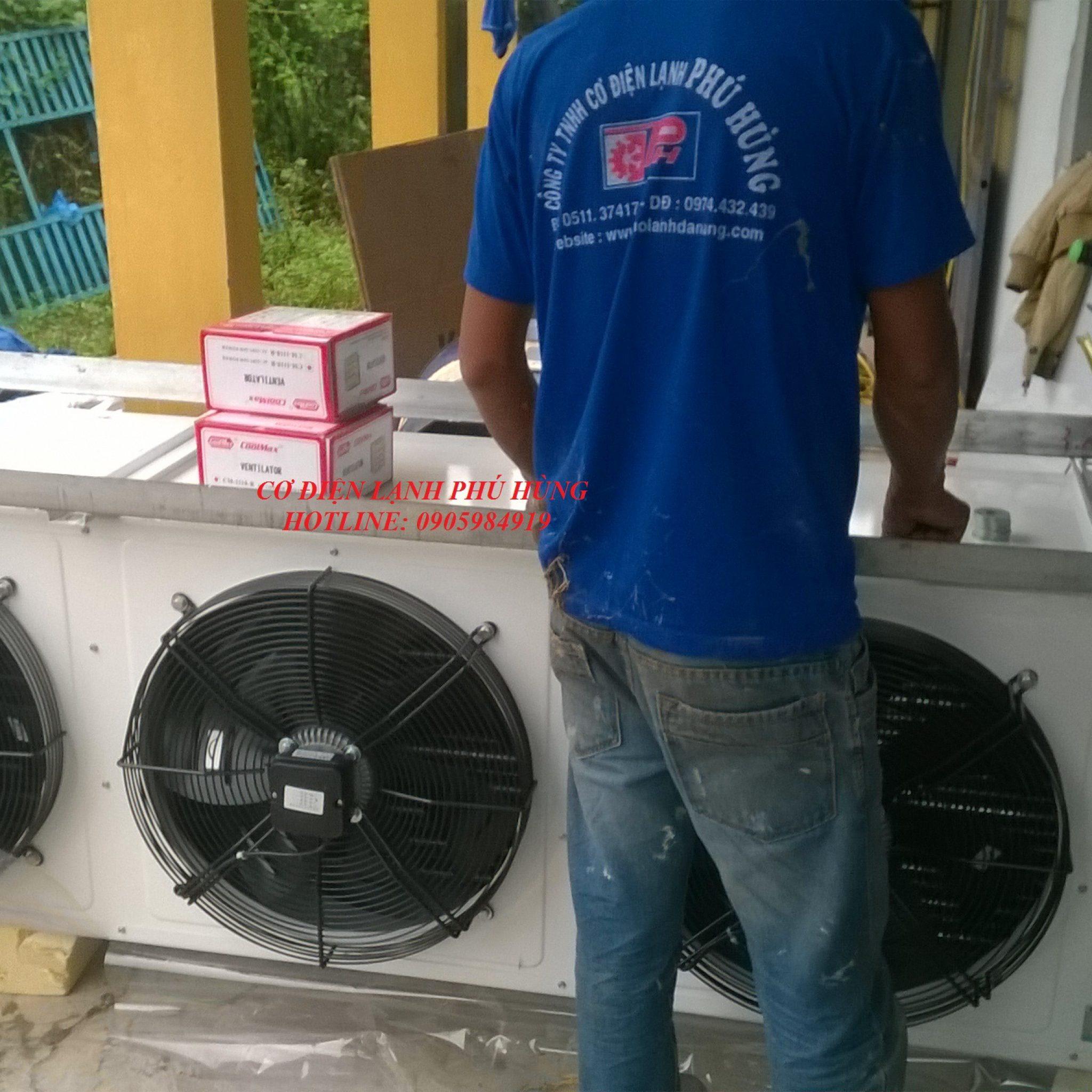 31 - Lắp Đặt kho lạnh trữ Cá Bò - Quảng Nam