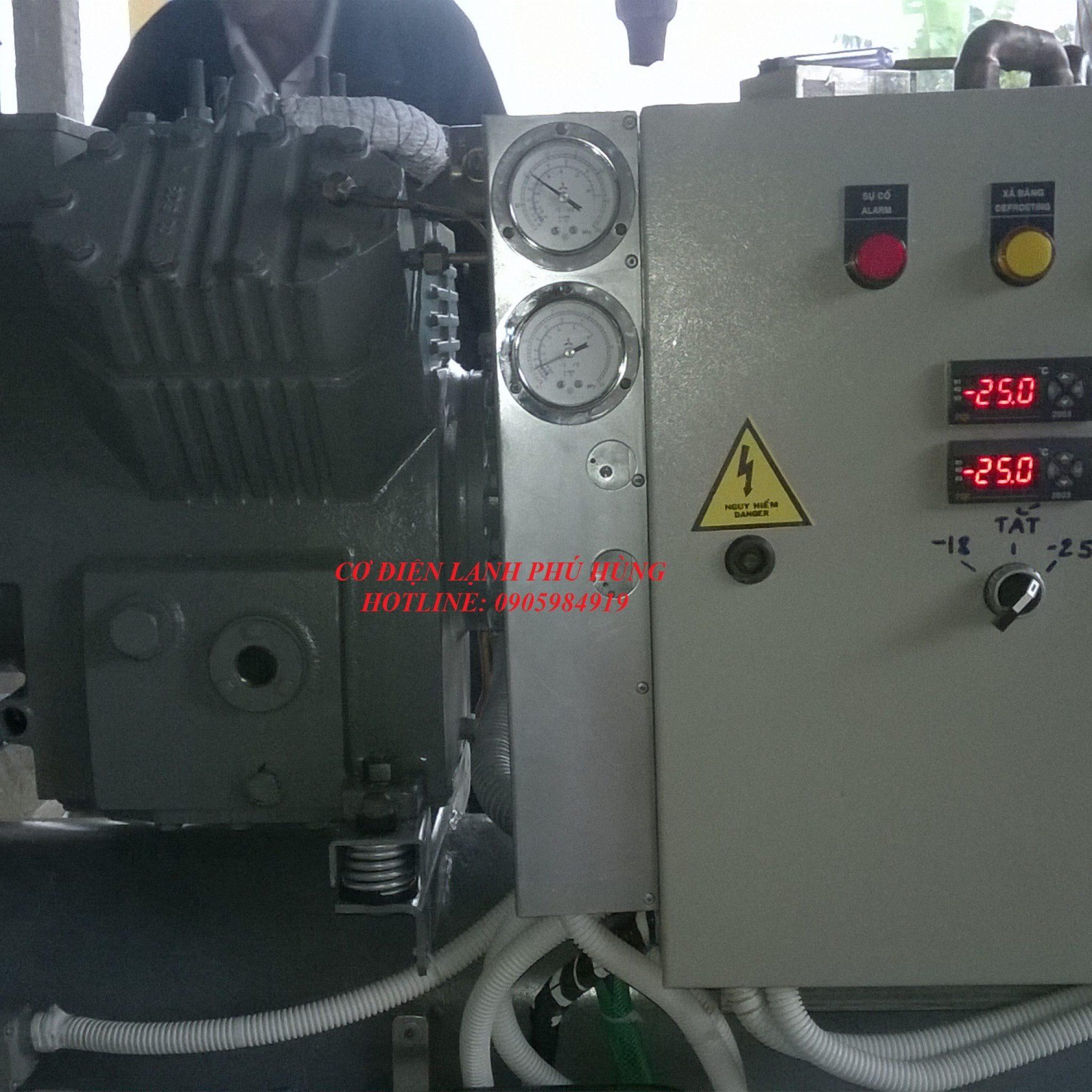 51 - Lắp Đặt kho lạnh trữ Cá Bò - Quảng Nam