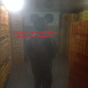1 300x300 - LẮP KHO LẠNH KS 5 SAO ĐÀ NẴNG GOLDEN BAY
