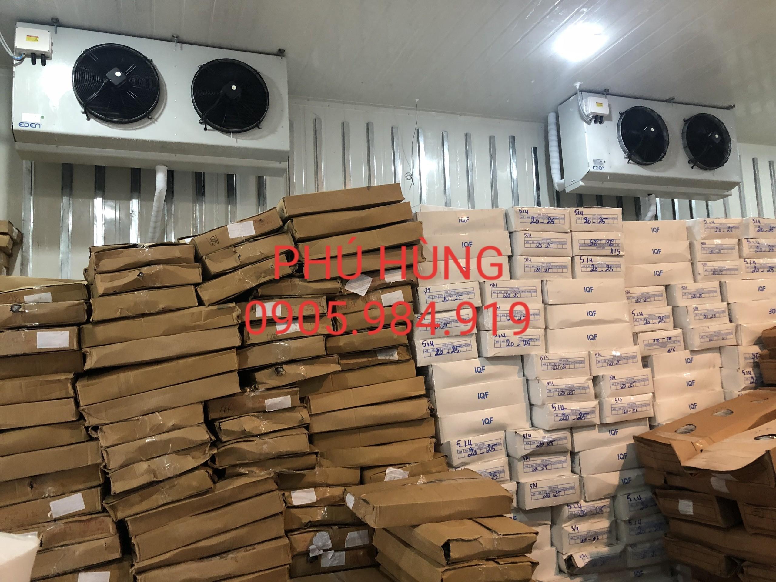 Cung Cấp Lắp Đặt Kho Lạnh Bảo Quản 100 Tấn Cá Đông